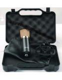 Energy Fidelity BM700 microfono a condensatore pronta consegna