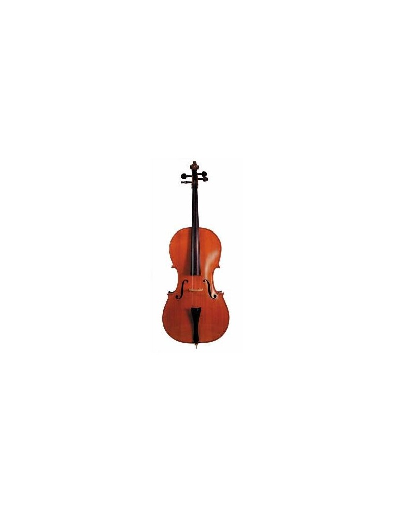 VIOLONCELLO 4/4 SOUNDSATION P601 CON TAVOLA IN ABETE MASSELLO CON ARCO E CUSTODIA
