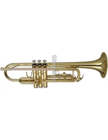 WISEMANN dtr-200 tromba Sib