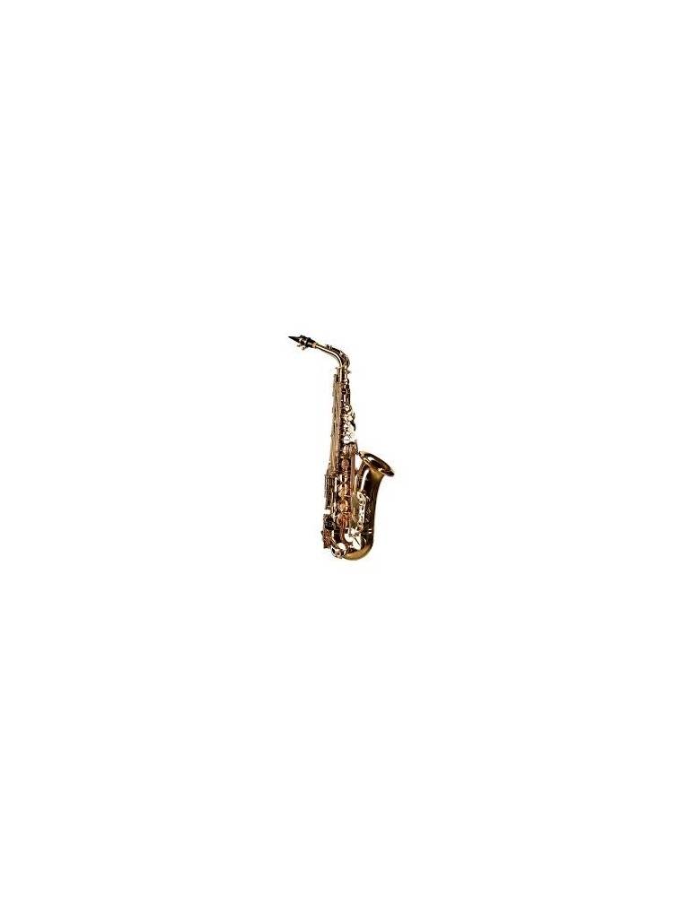 CIGALINI SAX CONTRALTO STUDIO AS-ST